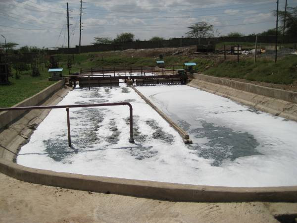 Depuration of tannery wastewater